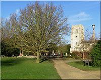 TL3949 : Barrington: on Challis Green by John Sutton