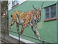 ST5873 : Lynx on Spring Hill, Bristol by Derek Harper