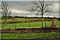 H5772 : Mullaghslin Glebe Townland by Kenneth  Allen