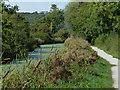 SK6731 : Disused Grantham Canal towards Kinoulton by Mat Fascione