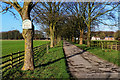 SE9241 : Arras Farm Avenue in winter by Andy Stephenson