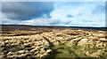 NZ0446 : Moorland north of Smiddy Shaw Reservoir by Trevor Littlewood