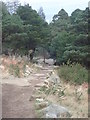 J3629 : The Glen River Path descending towards Sonny Bridge by Eric Jones