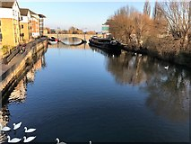 TL1998 : The River Nene in Peterborough by Richard Humphrey