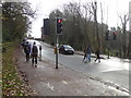 SX9293 : Pedestrian crossing, Prince of Wales Road, Exeter by Chris Allen