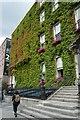 O1633 : Kildare Street and University Club by N Chadwick