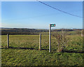 SU3378 : Byway Sign, Long Hedge by Des Blenkinsopp