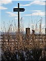 NJ5404 : Finger post sign at start of Footpath from near Wartle  to Tarland by Stanley Howe