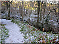 NH5966 : Path towards the gorge by Richard Dorrell