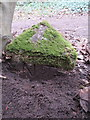 SJ2385 : National Trust boundary stone (3) on Thurstaston Common by John S Turner