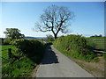 SO4286 : Country road near Woolston (2) by Stephen Richards