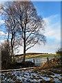 NJ5500 : View towards Mortlich (381m asl) by Stanley Howe