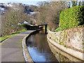 SJ2142 : Llangollen Canal by David Dixon