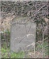 SJ7810 : Old Milestone by A Reade/M Faherty