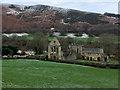 SJ2044 : Valle Crucis Abbey (Abaty Glyn Egwestl) by David Dixon