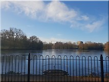SU7372 : Whiteknights Lake frozen over by Chris Wood
