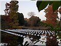 TQ1876 : View of Aether & Hemera's 'Voyage' - a flotilla installation at the Royal Botanic Gardens, Kew by J W
