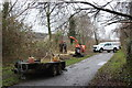 ST2998 : Tree thinning NCR 492, Griffithstown by M J Roscoe