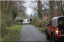 ST2998 : Tree felling, NCR 492, Griffithstown by M J Roscoe