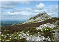SO3698 : Manstone Rock, Stiperstones by Stephen Richards