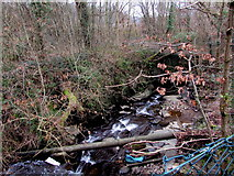 ST1494 : Pipe over a brook below Penallta Road, Ystrad Mynach by Jaggery
