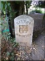 SU4726 : Old Boundary Marker by Five Bridges Road, Winchester Parish by Milestone Society