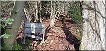 SU7225 : Entrance to Ridge Hanger by Paul Collins
