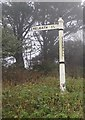SW6530 : Old Direction Sign - Signpost by Milestone Society