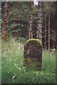 NG5536 : Old Milestone in Raasay Forest, Inverarish parish by Milestone Society
