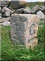 NX3344 : Old Milestone by Milestone Society