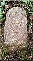 ST0206 : Old Bridge Marker by Milestone Society