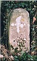 TG1124 : Old Milestone by CW Haines