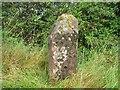 NY6621 : Old Milestone by C Smith / G Farrington