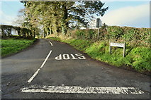 H6056 : Sess Road by Kenneth  Allen
