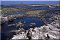 NU2337 : Staple Island by Ian Taylor