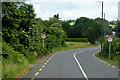 X0075 : N25 south of Killeagh by David Dixon