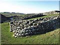 NY7166 : Milecastle 42 (Cawfields) (2) by Mike Quinn
