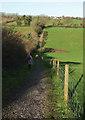 SX8864 : Path above Cockington valley by Derek Harper