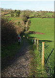 SX8864 : Path above Cockington valley by Derek Harper