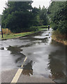 SP2965 : Puddles at a path junction, St Nicholas Park, Warwick by Robin Stott