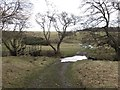 NU1606 : Footbridge and Ford, Newton Burn by Les Hull