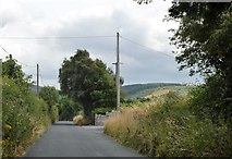 S7655 : Rural road in County Carlow by N Chadwick