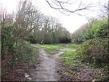 TQ2255 : Public bridleways, Tadworth by Malc McDonald