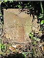 SO7092 : Old Milepost by JB Haynes