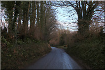 ST6501 : Sydling Road by Chris Heaton