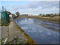 TM0223 : Sewage works outfall into River Colne by Robin Webster