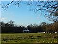 TQ5739 : Higher Common Cricket Ground, Tunbridge Wells by Stephen McKay