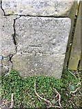 NX4355 : OS Cut Mark - Wigtown, Wall, NW Side, Southfield Lane by thejackrustles