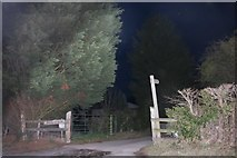 SO8564 : Path off Haye Lane, Ombersley by David Howard