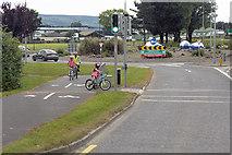 X2693 : Dungarvan, Pedestrian-Controlled Traffic Lights near Strandside Roundabout by David Dixon